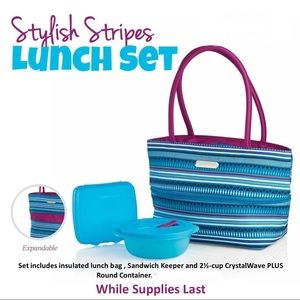 Tupperware stylish stripes lunch bag